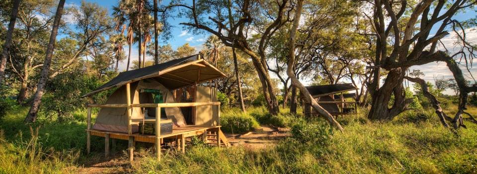 Oddballs' Tented Camp in Okavango Delta